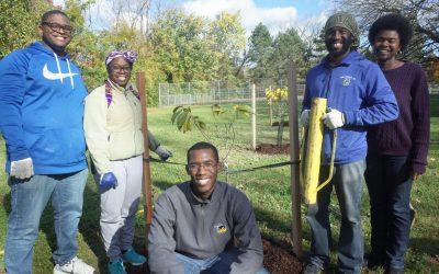 Blue Water Baltimore – Tree Planting in Owings Mills